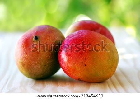 three mangoes fruits on table - stock photo