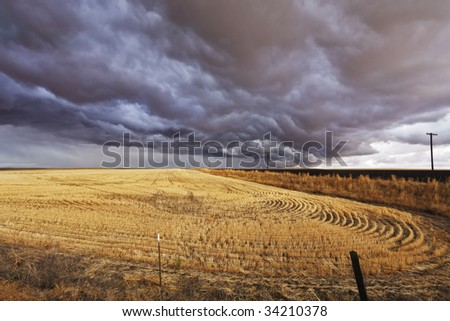 thundercloud above a field after harvesting