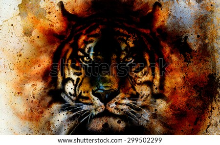 tiger collage on color abstract  background,  rust structure, wildlife animals, eye contact. - stock photo