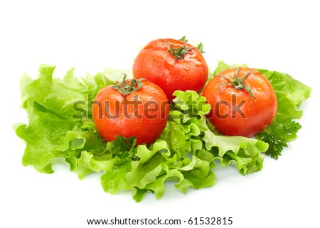 Tomatoes and lettuce  on the  white background - stock photo