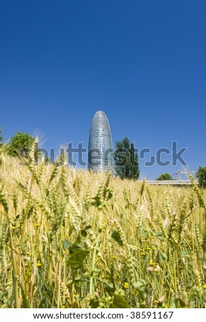 """Torre Agbar"" in Barcelona behind wheatfield - stock photo"