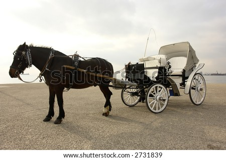 traditional horse-car