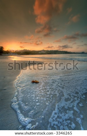 tropical beach - vacation - stock photo