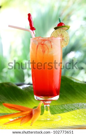 Tropical cocktail with fresh fruits - stock photo