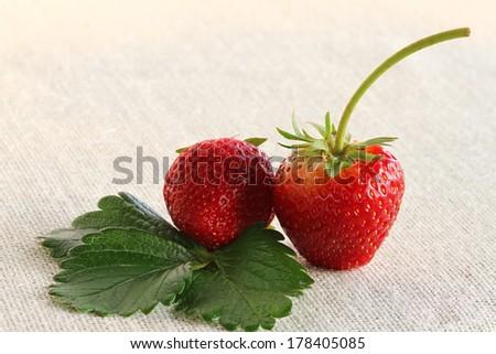 two flesh strawberries - stock photo