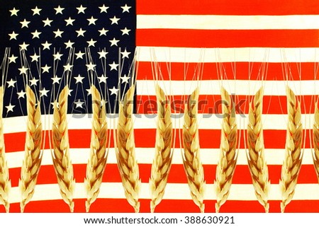 us or usa or American flag and wheat texture background