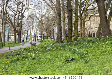 UTRECHT, NETHERLANDS, on March 30, 2016. Spring landscape. The avenue in the city park