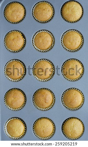 vanilla muffins in baking dish on a table macro. top view background - stock photo