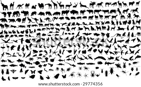 300 vector silhouettes of animals (mammals, birds, fish, insects) - stock photo