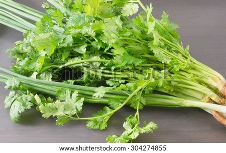 Vegetable and Herb, Bunch of Fresh Parsley, Chinese Parsley or Coriander and Spring Onion for Seasoning in Cooking on A Tray. - stock photo