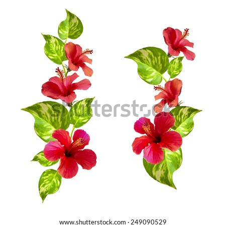 vertical flower border. beautiful floral arrangement with hibiscus and tropical leafs.   - stock photo