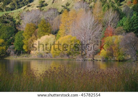 View across lake to autumn colors - stock photo