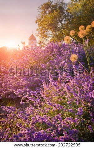 View of the Cathedral of Christ the Savior through the flowerbeds from Krymskaya naberezhnaya (waterfront), Moscow, Russia - stock photo