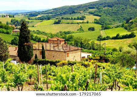 View through vineyards with stone house, Tuscany, Italy - stock photo