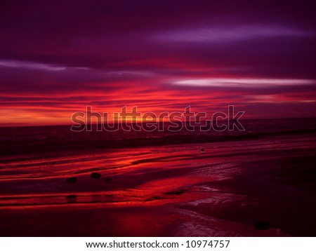 Violet sunrise - stock photo