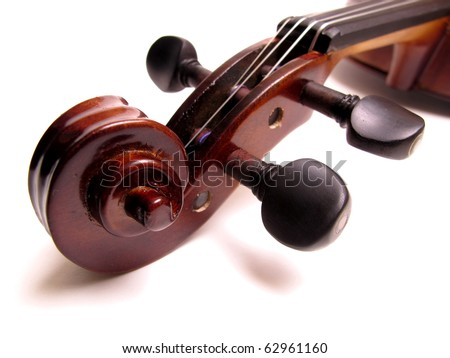 violin head stock and tuning pegs