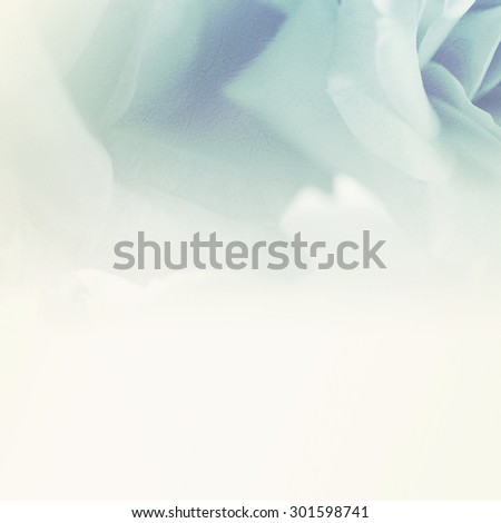 vivid color flower petals in soft color on mulberry paper texture for background                               - stock photo