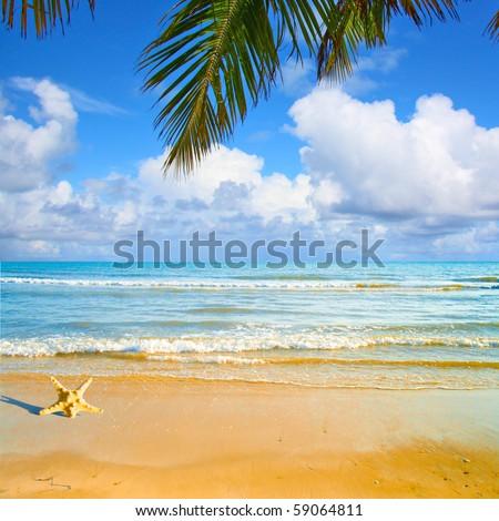Waves under Palms - stock photo