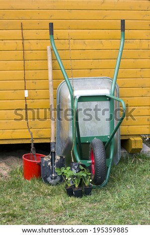 wheelbarrow shovel and young plant.  work in the garden - stock photo