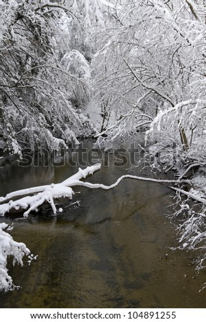 """White Blanket"" -- Fresh snow covers a small creek at a park."