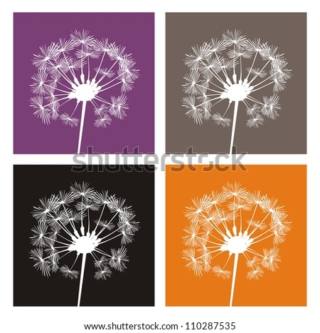 4 white dandelion silhouette on different, colorful backgrounds. Indian summer - flower icons, buttons, logo, sticker or other design elements. - stock photo