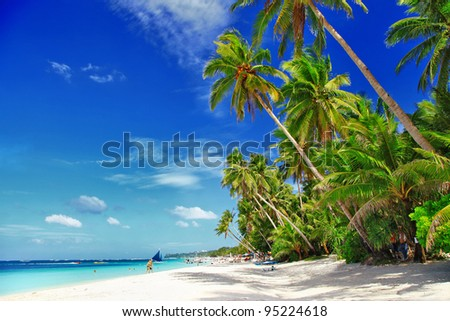 white sandy tropical beach