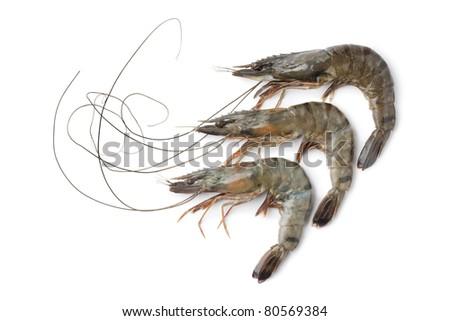 Whole fresh black tiger shrimps on white background - stock photo