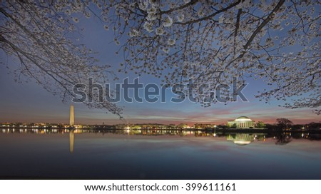Wide shot of Washington DC skyline and Cherry blossoms on the tidal basin