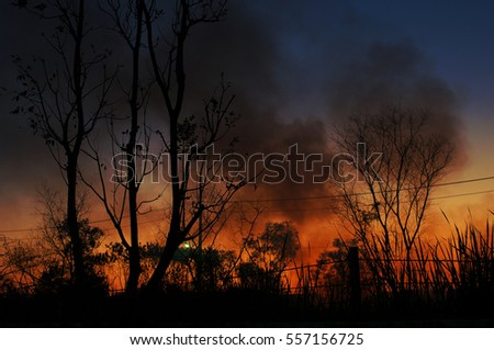 wildfire  Twilight