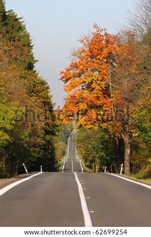 Winding road with autumn forest - stock photo