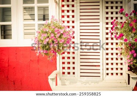 windows  and fresh flowers in vintage retro style. - stock photo