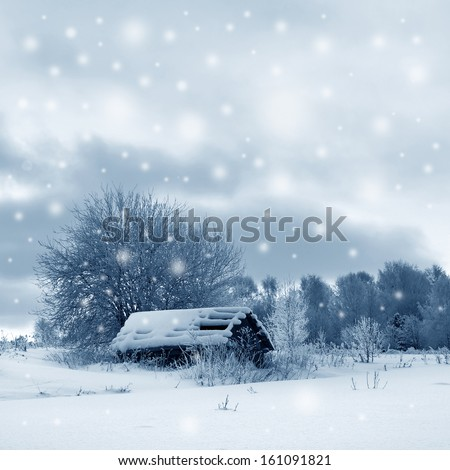 Winter landscape, scenery  - stock photo