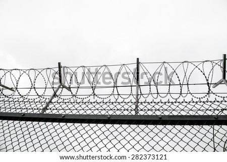 wired fence with barbed wires on cloudy  sky  background - stock photo