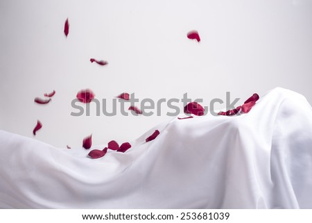 Woman fully covered by a white sheet with rose petals falling on her - stock photo