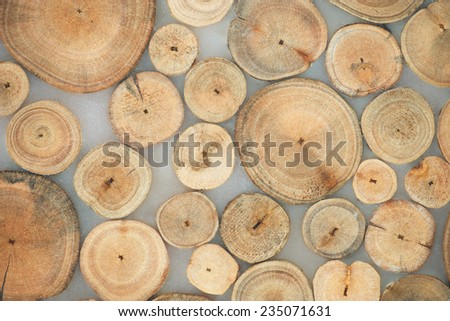 wooden brown background. - stock photo