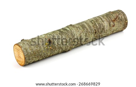 Wooden obsolete log. Top view. Isolated on a white. - stock photo
