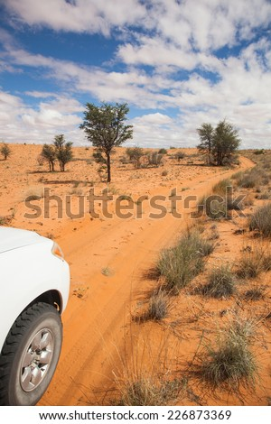 4x4 car on a sandy trail with tire tracks in the red sand of the Kalahari desert, Kagalagadi Transfrontier Park, South Africa - stock photo