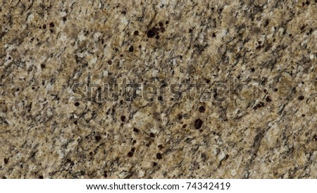 1x4ft Sample of New Venetian Gold Granite - stock photo
