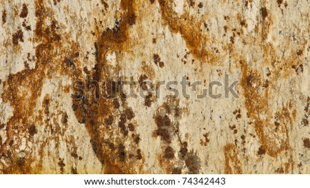 1x4ft Sample of Tropical Varnish Granite - stock photo