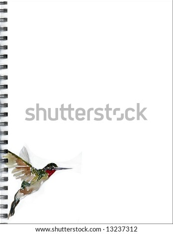 8.5 x 11 inch page with original watercolor hummingbird painted in lower left for journal, scrapbook, stationery, or Web - stock photo