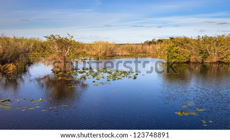 16x9 panorama of marshes along the Anhinga Trail in Everglades National Park, Florida. - stock photo