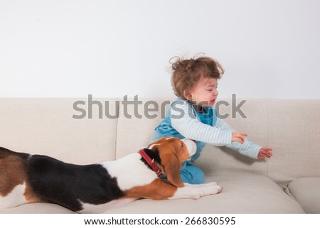 1 year old baby boy crying because his pet wants to play. - stock photo