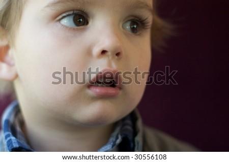 2 year old boy - stock photo