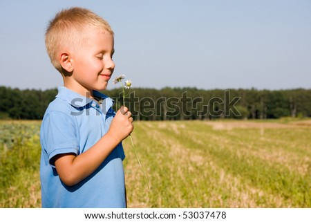 4 years boy smelling daisy flower on a field - stock photo