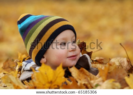 2 years old baby boy in autumn leaves in a park. Kid has fun playing in fall leaves.