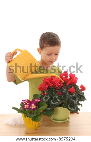 6 years old boy and flowers isolated on white