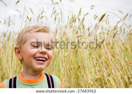 3 years old boy laughing on wheat field - stock photo