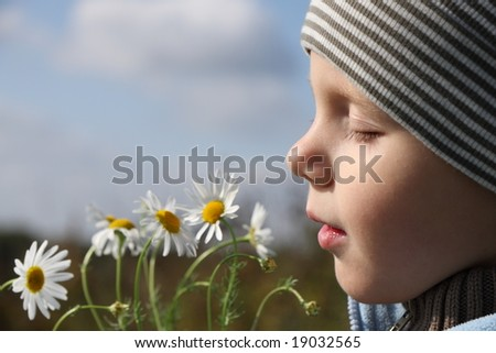 3 years old boy smelling chamomile flower outdoors - stock photo