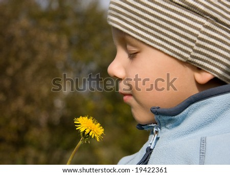3 years old boy smelling dandelion in autumnal scenery - stock photo