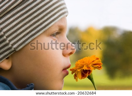 3 years old boy smelling flower in autumnal scenery. Focus on flower. - stock photo